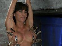 HogTied - sexy brunette Gia hot BDSM porn video
